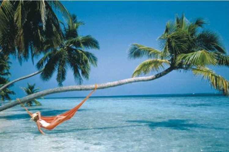hammock-on-beach | The Alembicated Genie