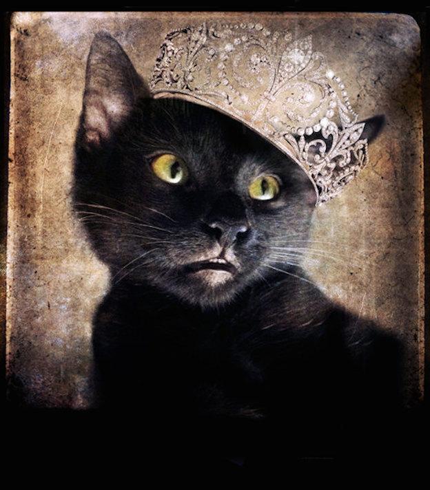 blackcattiara